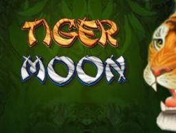 Microgaming – Tiger Moon