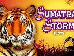 IGT – Sumatran Storm