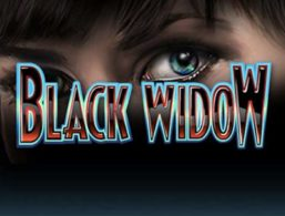 IGT – Black Widow