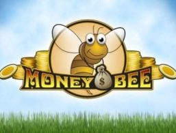 IGaming2go – Money Bee
