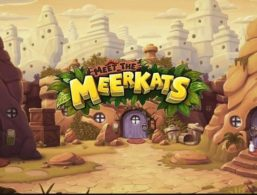 Push Gaming – Meet the Meerkats