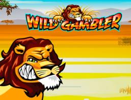 Ash Gaming – Wild Gambler