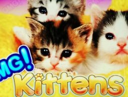 Williams Interactive – Omg! Kittens