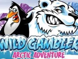 Ash Gaming – Wild Gambler Arctic Adventure