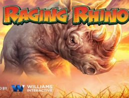 Williams Interactive – Raging Rhino