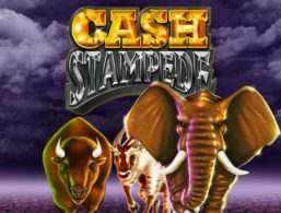 Nextgen – Cash Stampede