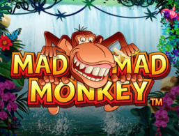 Nextgen – Mad Mad Monkey