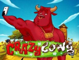 Play'n GO – Crazy Cows