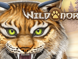 Play'n GO – Wild North