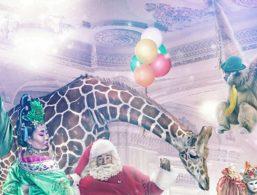 Julekalender på online casino
